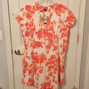 Women's fall color dress Size 22W